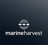Marine Harvest Laxa